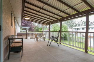 Photo 15: 45167 DEANS Avenue in Chilliwack: Chilliwack W Young-Well House for sale : MLS®# R2171974