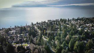 Photo 37: 13095 14A Avenue in Surrey: Crescent Bch Ocean Pk. House for sale (South Surrey White Rock)  : MLS®# R2531303