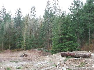Photo 4: 1927 CHELSEA ROAD in COURTENAY: Comox Valley Land Only for sale (Vancouver Island/Smaller Islands)  : MLS®# 230414