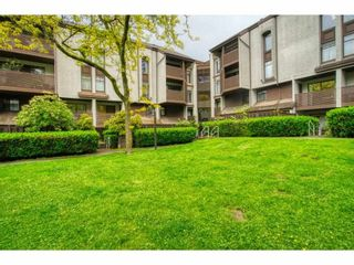 """Photo 4: 402 340 GINGER Drive in New Westminster: Fraserview NW Condo for sale in """"FRASER MEWS"""" : MLS®# R2599521"""