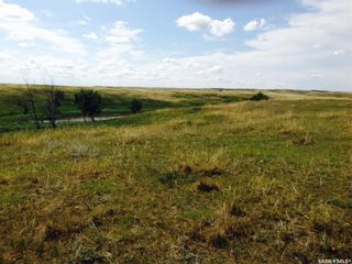 Photo 6: Diamond D Land and Cattle Ltd. in Lacadena: Farm for sale (Lacadena Rm No. 228)  : MLS®# SK833271