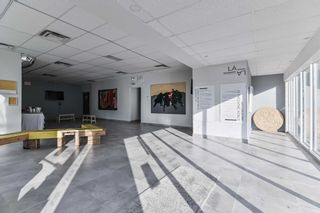 Photo 6: 1756 W Dundas Street in Toronto: Dufferin Grove Property for sale (Toronto C01)  : MLS®# C5155636