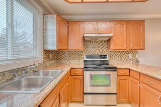 Photo 18: 355 Whitman Place NE in Calgary: Whitehorn Detached for sale : MLS®# A1046651