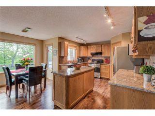 Photo 11: 85 SUNMEADOWS Crescent SE in Calgary: Sundance House for sale : MLS®# C4115750