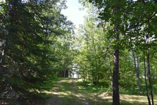 Photo 22: 24 Rush Bay in Kenora: House for sale : MLS®# TB211694
