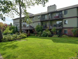 Photo 24: 303 1655 Begbie St in VICTORIA: Vi Fernwood Condo for sale (Victoria)  : MLS®# 839169