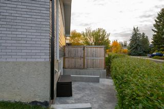 Photo 35: 6747 71 Street NW in Calgary: Silver Springs Detached for sale : MLS®# A1149158