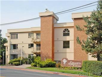 Main Photo: 103 3880 Quadra St in VICTORIA: SE Quadra Condo for sale (Saanich East)  : MLS®# 595060