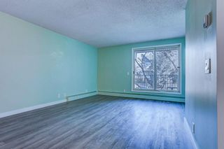 Photo 14: 210 525 56 Avenue SW in Calgary: Windsor Park Apartment for sale : MLS®# A1086866