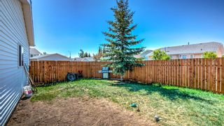 Photo 34: 10 GREEN MEADOW Place: Strathmore Detached for sale : MLS®# A1115113