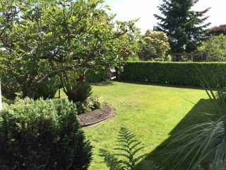 """Photo 3: 1329 COTTONWOOD Place in North Vancouver: Norgate House for sale in """"Norgate"""" : MLS®# R2375770"""