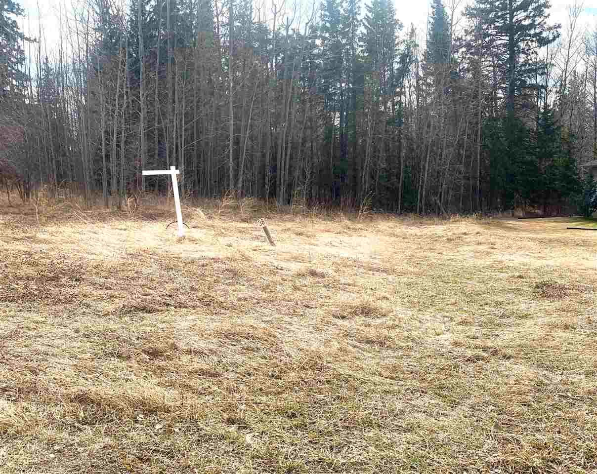 Main Photo: 114 HERON POINT Close: Rural Wetaskiwin County Rural Land/Vacant Lot for sale : MLS®# E4242538