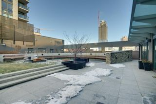 Photo 25: 908 1111 10 Street SW in Calgary: Beltline Apartment for sale : MLS®# A1119990