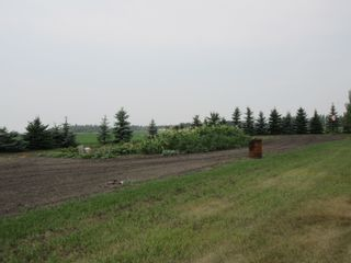 Photo 41: 24123 HWY 37: Rural Sturgeon County House for sale : MLS®# E4259044