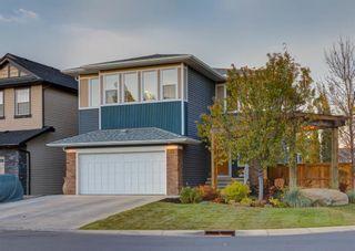 Photo 45: 72 Silverado Ridge Crescent SW in Calgary: Silverado Detached for sale : MLS®# A1153692