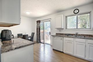 Photo 15:  in Edmonton: Zone 35 House for sale : MLS®# E4254409