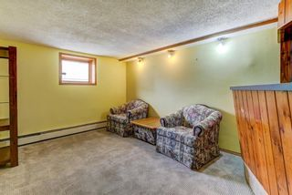 Photo 33: 4 Commerce Street NW in Calgary: Cambrian Heights Detached for sale : MLS®# A1127104