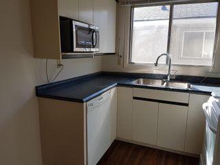 Photo 34: 13046/13048 101 Street in Edmonton: Zone 01 House Duplex for sale : MLS®# E4249049