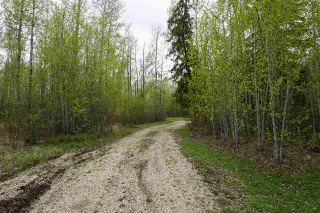 Photo 3: 426 53414 Rge Rd 62: Rural Lac Ste. Anne County Rural Land/Vacant Lot for sale : MLS®# E4239660