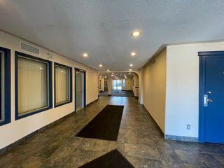 Photo 10: 533 11325 83 Street in Edmonton: Zone 05 Condo for sale : MLS®# E4256939