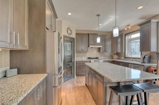 Photo 17: 162 Aspenmere Drive: Chestermere Detached for sale : MLS®# A1014291