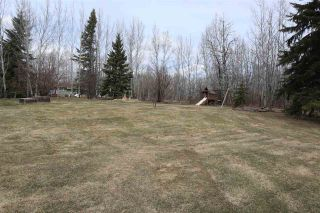 Photo 36: 4502 22 Street: Rural Wetaskiwin County House for sale : MLS®# E4241522