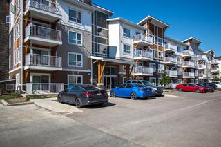 Main Photo: 5309 302 Skyview Ranch Drive NE in Calgary: Skyview Ranch Apartment for sale : MLS®# A1125142