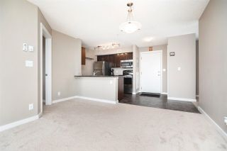 Photo 23: 306 5810 MULLEN Place in Edmonton: Zone 14 Condo for sale : MLS®# E4241982