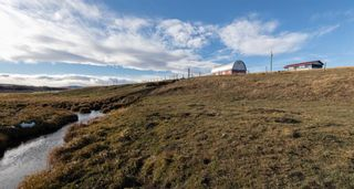 Photo 10: 498 Ave W & Hwy 22: Rural Foothills County Land for sale : MLS®# C4302344
