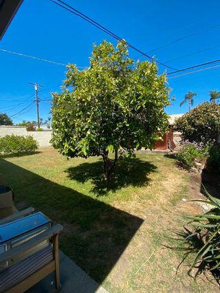 Photo 27: KENSINGTON House for sale : 3 bedrooms : 4825 Kensington Dr. in San Diego