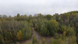 Photo 2: Hwy 11 & RR 53: Rural Parkland County Rural Land/Vacant Lot for sale : MLS®# E4265869