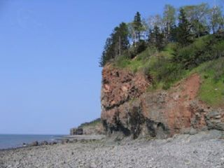 Photo 5: Lot 17 Augsburger Street in Victoria Harbour: 404-Kings County Vacant Land for sale (Annapolis Valley)  : MLS®# 202010554