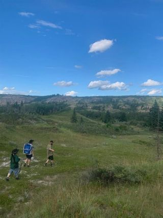 Photo 10: Range Road 215: Rural Red Deer County Land for sale : MLS®# A1021672
