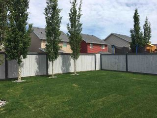 Photo 39: 8528 20 Avenue in Edmonton: Zone 53 House for sale : MLS®# E4255097