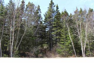 Photo 5: Lot 88 Otter Point Road in East Chester: 405-Lunenburg County Vacant Land for sale (South Shore)  : MLS®# 202109363