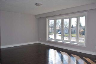 Photo 10: 123 Wilson Drive in Milton: Dorset Park House (Sidesplit 4) for lease : MLS®# W4002144