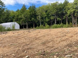 Photo 8: 1504 Greenvale Road in Macphersons Mills: 108-Rural Pictou County Vacant Land for sale (Northern Region)  : MLS®# 202122532