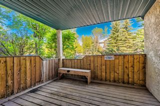 Photo 9: 114 11 Dover Point SE in Calgary: Dover Apartment for sale : MLS®# A1125915