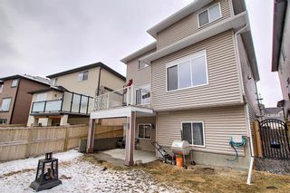 Photo 45: 6 Baysprings Terrace SW: Airdrie Detached for sale : MLS®# A1092177
