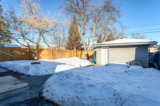 Photo 43: 4816 30 Avenue SW in Calgary: Glenbrook Detached for sale : MLS®# A1072909