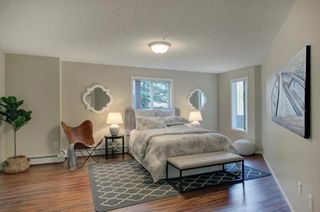 Photo 16: 1211 1211 Millrise Point SW in Calgary: Millrise Apartment for sale : MLS®# A1097292