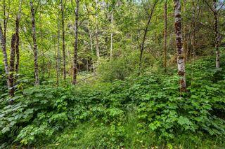 Photo 31: 16706 Parkinson Rd in Port Renfrew: Sk Port Renfrew Land for sale (Sooke)  : MLS®# 882036