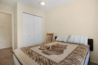 "Photo 14: 407 33478 ROBERTS Avenue in Abbotsford: Central Abbotsford Condo for sale in ""Aspen Creek"" : MLS®# R2173425"