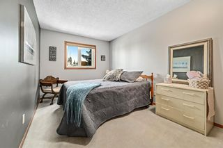 Photo 25: 92 Sandringham Close in Calgary: Sandstone Valley Detached for sale : MLS®# A1146191