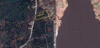 Photo 3: Lot 1 Jordan Branch Road in Jordan Branch: 407-Shelburne County Vacant Land for sale (South Shore)  : MLS®# 202108864