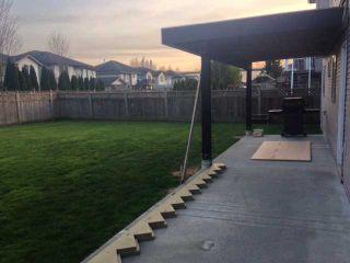 Photo 19: 20188 DITTON ST in Maple Ridge: Southwest Maple Ridge House for sale : MLS®# V1108490