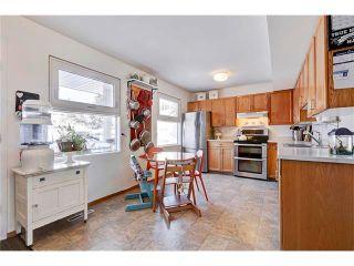 Photo 14: 454 4525 31 Street SW in Calgary: Rutland Park House for sale : MLS®# C4040231