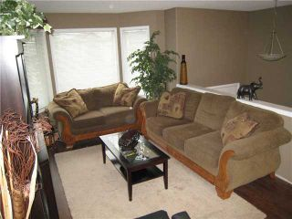 Photo 5: 197 STONEGATE Drive NW: Airdrie Residential Detached Single Family for sale : MLS®# C3492273