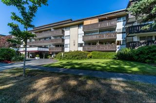 Photo 2: 211 964 Heywood Ave in Victoria: Vi Fairfield West Condo for sale : MLS®# 884085