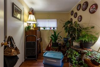 Photo 25: 4096 S Island Hwy in : CR Campbell River South House for sale (Campbell River)  : MLS®# 867092